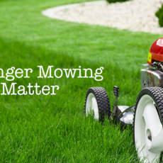 Why Longer Mowing Heights Matter