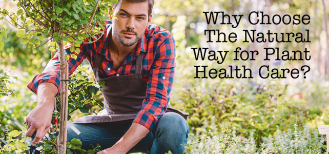Why Choose The Natural Way for Plant Health Care?