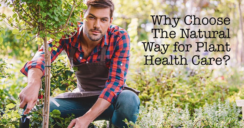 natural way to health